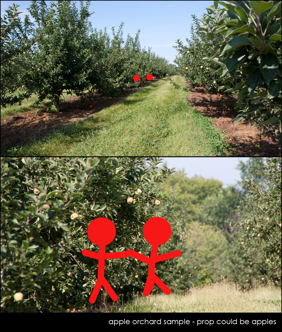 apple orchard Tamron: An Inside Look at Preparing for an On Location Commercial Photo Shoot