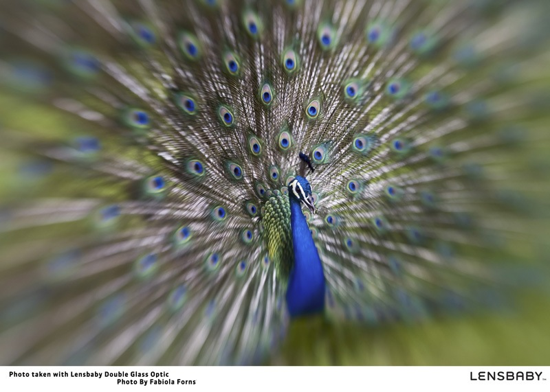 """lensbaby06 fabiola forns thumb Win a Lensbaby Composer if you can """"see in a new way"""""""