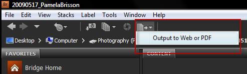 image002 Finishing Steps in Adobes Bridge   Preparing for Web
