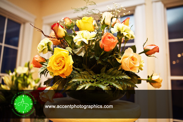 Flowers 10mcp 5 Easy Ways to Learn Photography