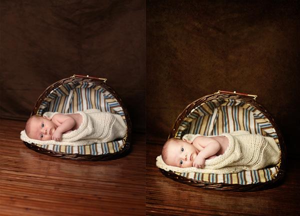 gina neary Blueprint: Fan Share of a Sweet Newborn in a Basket