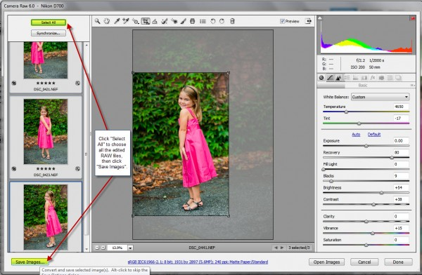 5 b 600x392 Speed Up Your Workflow   Batch Editing, Presets, and Resizing/Sharpening