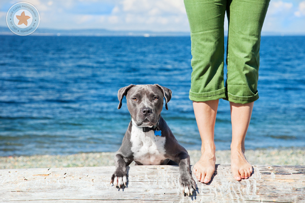 final4 Pet Photography: 7 Surefire Tips for Capturing a Dogs Personality