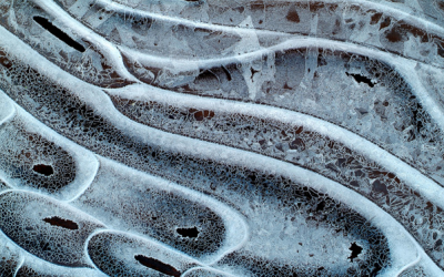 Photographing Abstract Macro Ice Images and Creating Works of Art