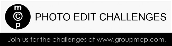 Edit Challenge Banner1 600x162 MCP Editing and Photography Challenges: Highlights from this Week