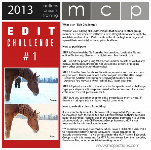 edit challenge 1 600x598 MCP Photography and Editing Challenge Highlights
