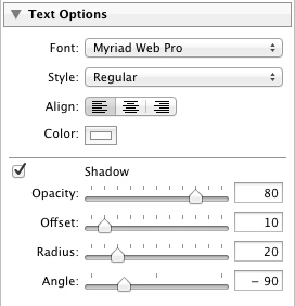 The Text Options Panel in Lightroom 3