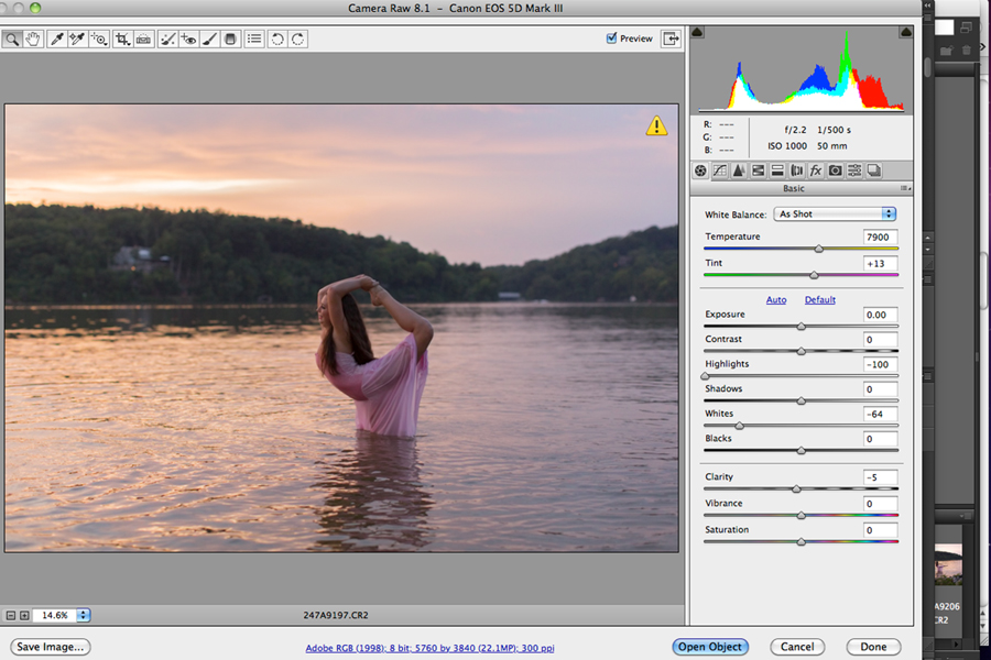 How to Add Beautiful Tones using MCP Autumn Equinox Actions