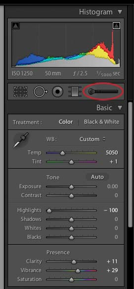 activate lightroom adjustment brush1 How to Use The Local Adjustment Brush In Lightroom: Part 1