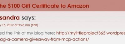 Winner of the Camera Giveaway + Amazon Gift Certificate