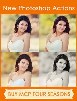 buy-mcp-four-seasons-photoshop-actions