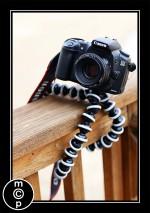 gorilla pod 11 150x213 Win Canon or Nikon Lens Mugs from Photojojo