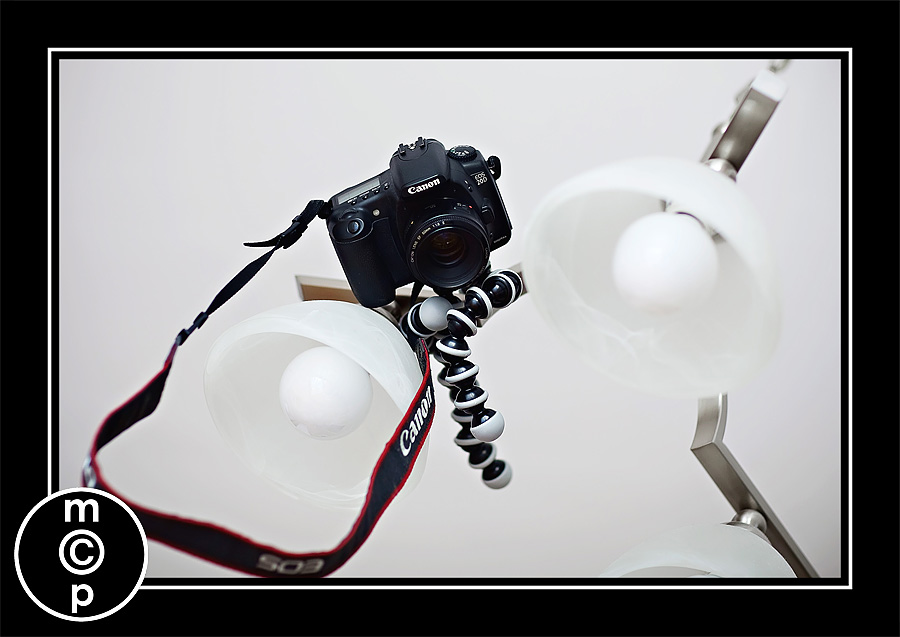 gorilla pod 3 Ever Wish Your Tripod was Small and Flexible?  Meet the Gorillapod (And Enter to Win One)