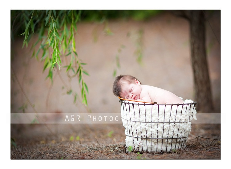 img 4962 thumb1 Newborn Photography: How to Use Light When Shooting Newborns