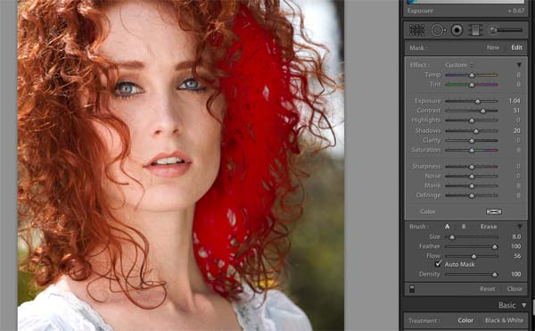 lightroom adjustment brush example1 How to Use The Local Adjustment Brush In Lightroom: Part 1