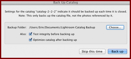 lightroom backup options edited 21 Hurry: How to Backup Your Lightroom Catalog Today