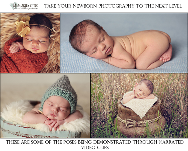 poses1 Newborn Photography Group Mentoring: The Start To Finish Workshop