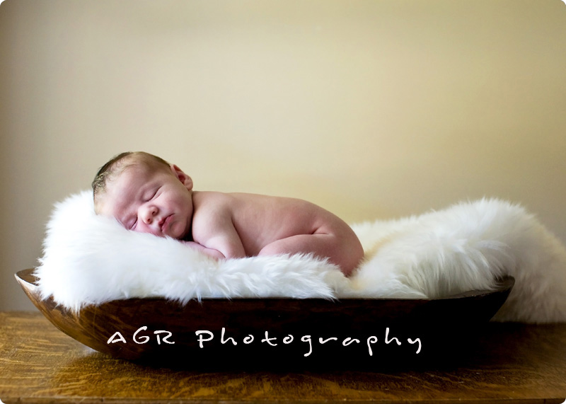 Newborn photography poses styles of newborn photography