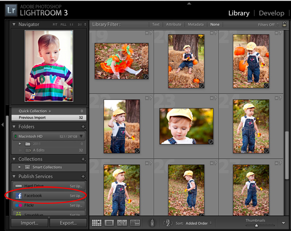 The Publish Services Panel in Lightroom 3