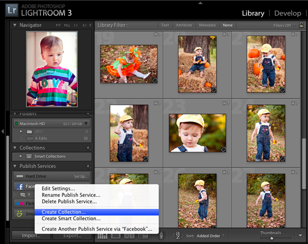 Creating a Facebook collection from within Lightroom 3