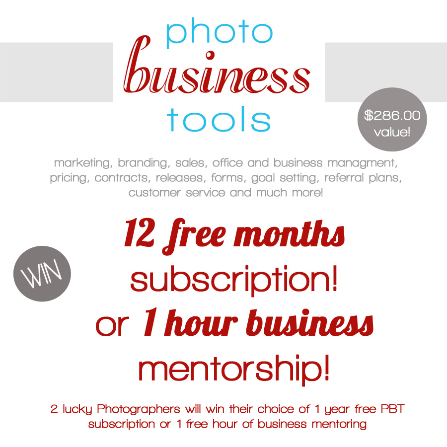 win 12 free mos MCP2 Make More This Holiday: Win Mentoring or 1 Year Subscription to Photo Business Tools