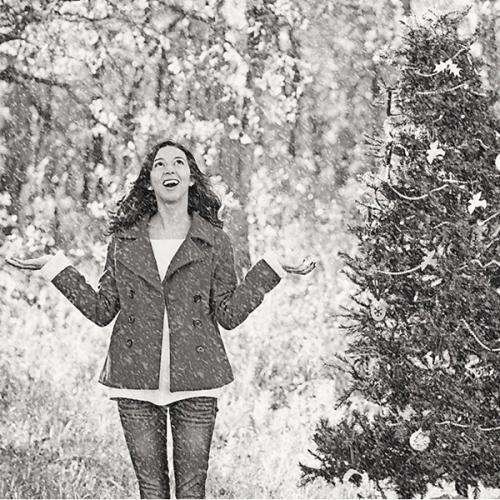 winter wonderland photoshop action set