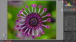 OOG 600x335 150x83 The Quick Clicks Preset Collection is Now Available for Lightroom 4