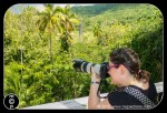 St Kitts 59 600x410 150x102 The Photographer ~ on a Family Vacation ~ with Kids
