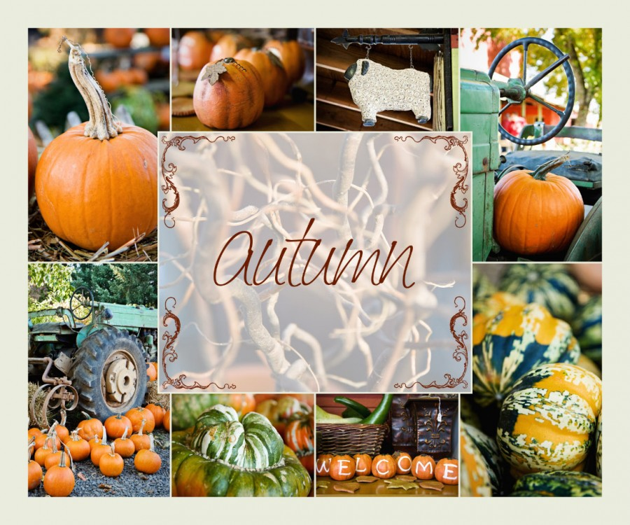 autumn 900x750 Fall ~ the best season of all...  Share your fall photos