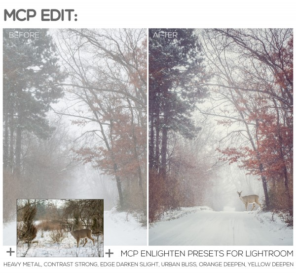 Lightroom and Photoshop for a More Powerful Edit