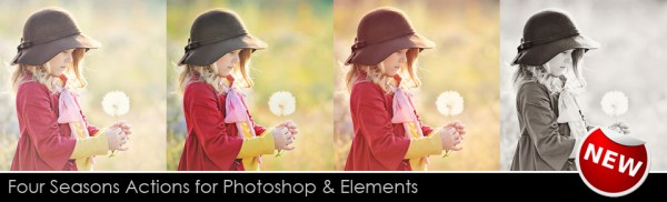 header for newsletter 600x182 The MCP Four Seasons Photoshop Actions Package is NOW AVAILABLE!