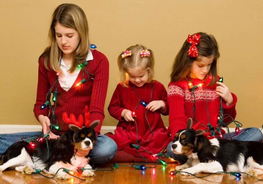 img 8377 900x630 Enhancing Christmas Lights Using Photoshop * watch your lights glow
