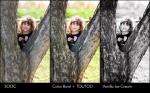 jenna blueprint 600x373 150x93 Get Crisp Images + Color Pop Using Photoshop Actions: Blueprint