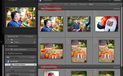How to Quickly Share Your Lightroom Collections on Facebook