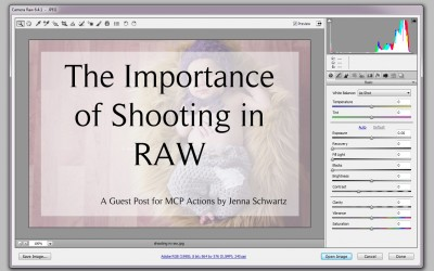 The Importance of Shooting in RAW Format