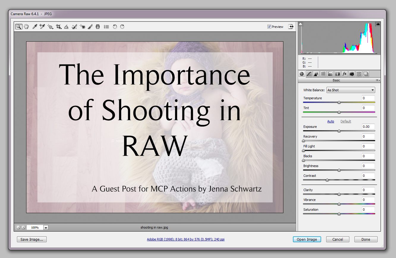 shooting in raw1 The Importance of Shooting in RAW Format