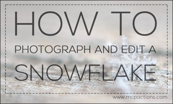 How to Photograph and Edit a Snowflake + A Free Sparkle Brush