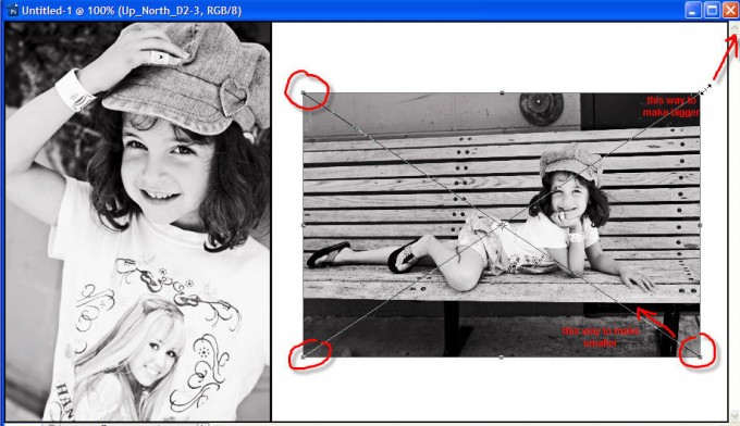 transform tool1 680x392 Quick Photoshop Tip: how to use the transform tool