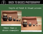 visual lesson 450x357 150x119 Want Guaranteed Perfect Focus In Every Photo? Learn To Use Selective Focus