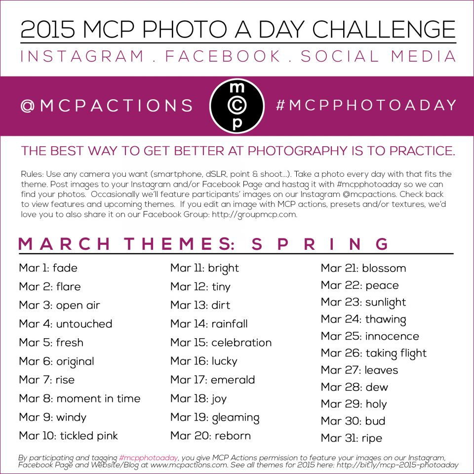 photo-a-day