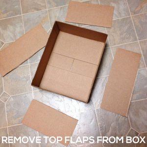 REMOVE TOP FLAPS