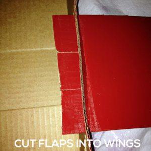 cut flaps