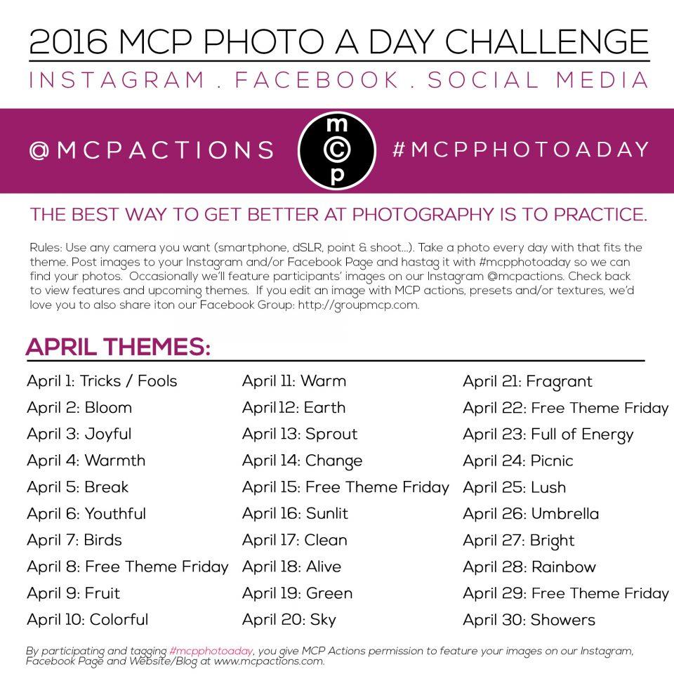 mcpphotoaday april 2016
