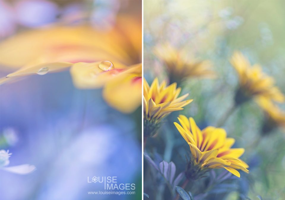 Different compositions