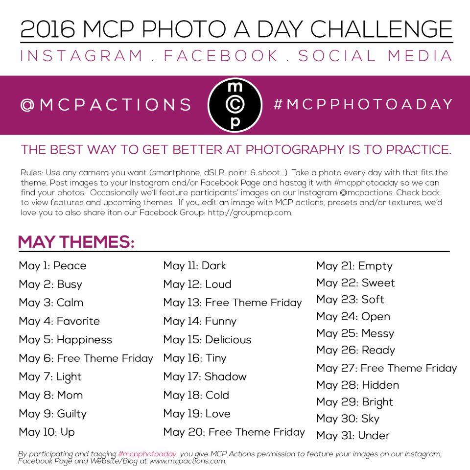 mcpphotoaday may 2016 2