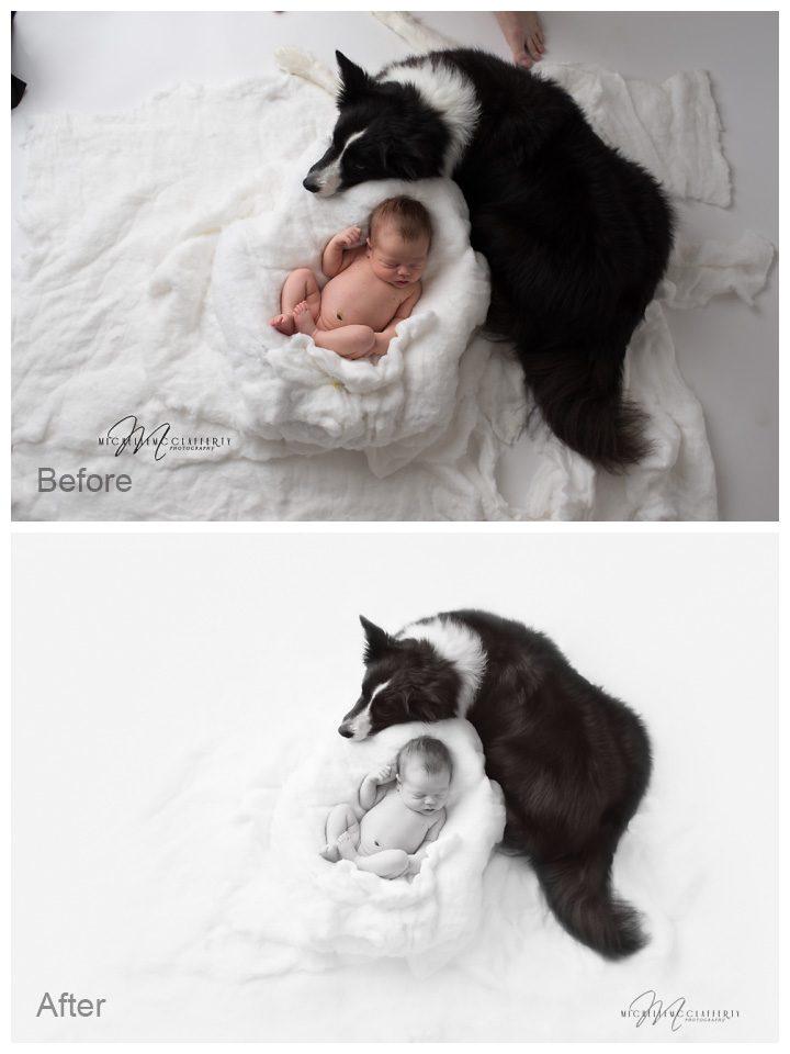 newborn banda