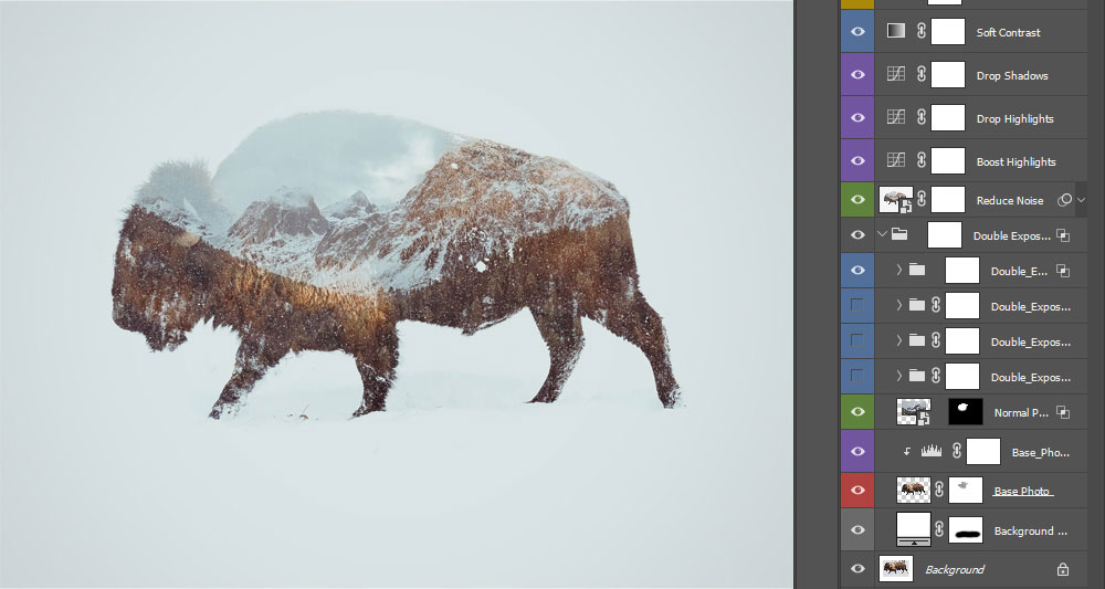 bison-double-exposure