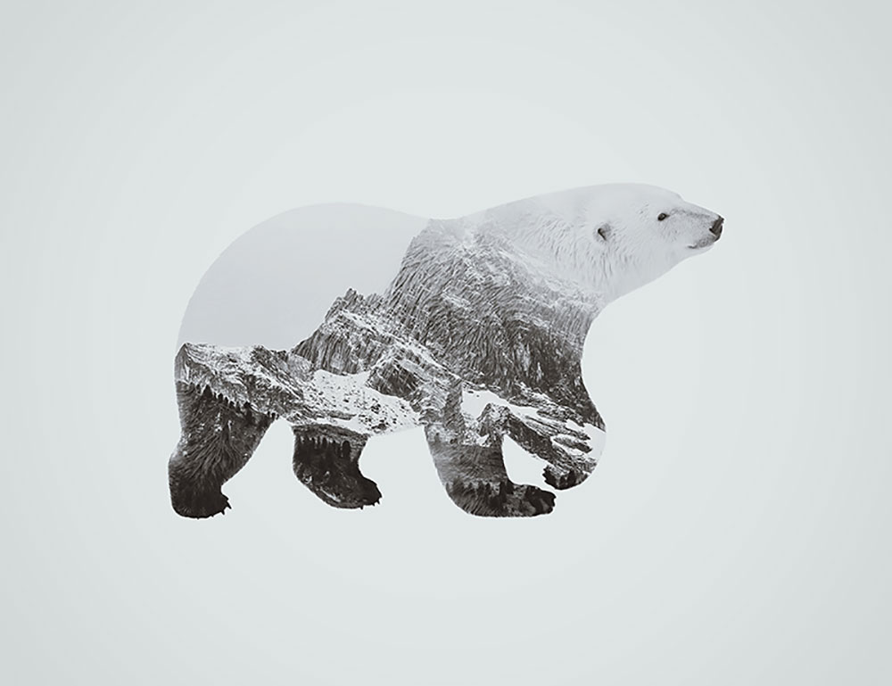 finished-prodcut-bear Double Exposure Photoshop Action