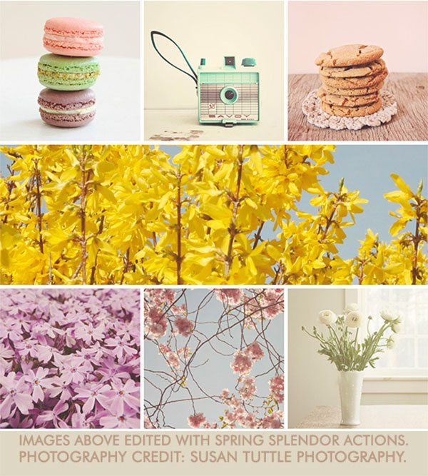 spring-splendor1 MCP Actions™ Originals: Photoshop Actions Bundle