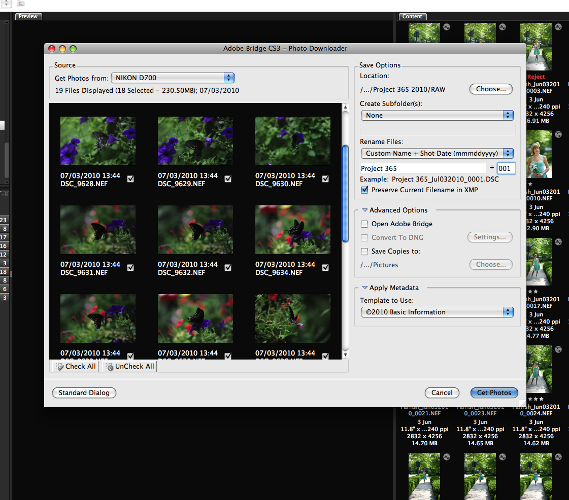 04-PhotoDownloader Digital Workflow Using Photoshop and Adobe Camera Raw and Bridge Guest Bloggers Photoshop Tips & Tutorials